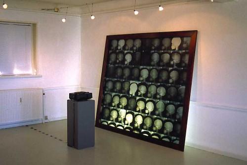 Fotograf: Lasse PedersenVærk  titel: Uden titel Værk  type: Installation Materiale: Træ, røntgenbilleder og dias Størrelse: 180 x 220 cm Færdiggjort: 1998