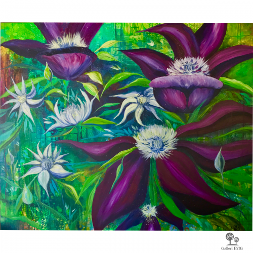 Clematis-in-the-wild.png
