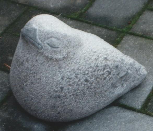 Fugl-Skare2.jpg