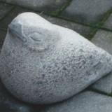 Fugl-Skare2