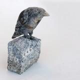 nj_hansen_bird